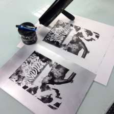 Image for Waterless Plate Lithography