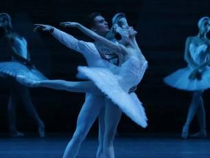 Image for Bolshoi: Swan Lake}