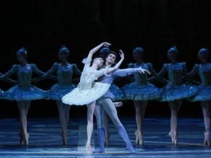 Image for Bolshoi: The Sleeping Beauty}
