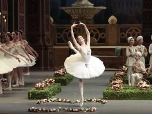 Image for Bolshoi: Le Corsaire}