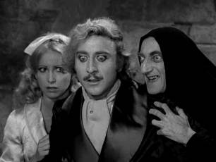Image for Young Frankenstein}