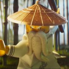 Image for Bring a Baby: The Lego Ninjago Movie