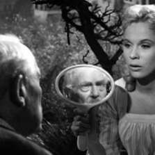 Image for Wild Strawberries
