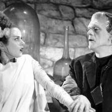 Image for Being Human - Bride of Frankenstein