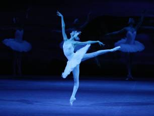 Image for Bolshoi: Swan Lake}