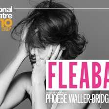 Image for NT Live: Fleabag