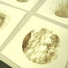 Image for Misprints: Daksha Patel