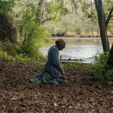 Image for Subtitled: Harriet