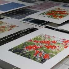 Image for Intermediate Screen Printing (Weekend)