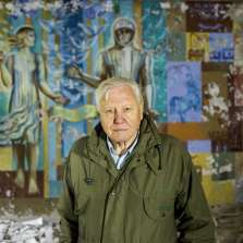 Image for David Attenborough: A Life On Our Planet
