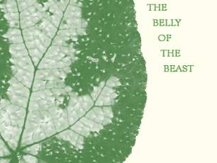 Image for Notes From the Belly of the Beast: Michele Horrigan, Sean Lynch & Stuart Whipps in Conversation}