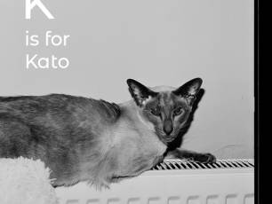Image for K is for Kato: A Book Launch and Conversation with Margaret Salmon and Race MoChridhe}