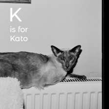 Image for K is for Kato: A Book Launch and Conversation with Margaret Salmon and Race MoChridhe
