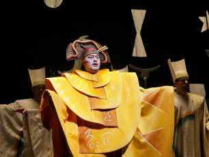 Image for Live from the Met: The Magic Flute (Encore)}