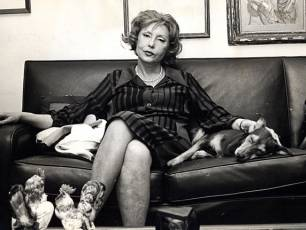 Image for In the Evening There is Feeling Online: Reading Clarice Lispector}