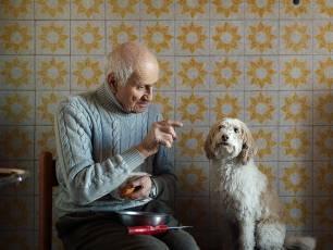 Image for Senior Citizen Kane: The Truffle Hunters}