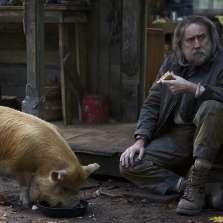 Image for EIFF: Pig