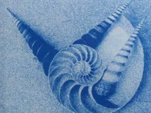 Image for Cyanotype}