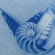 Image for Cyanotype